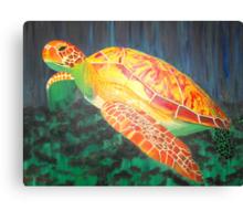 Sea turtle within rays of sunshine Canvas Print