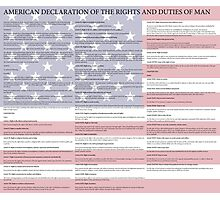 American Declaration of the Rights and Duties of Man Light Background Photographic Print