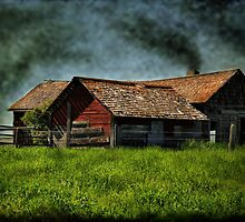 Abandoned But the Fire Is On by Vickie Emms