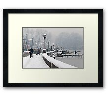 Life after Snowstorm Framed Print