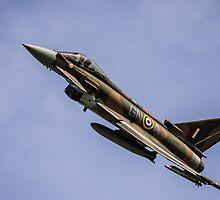 Eurofighter Typhoon ZK349 by Lee Wilson