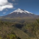 Cotopaxi Inspiration by Paul Duckett
