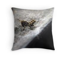 Baby Out Of Season Throw Pillow