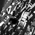 shadows in the cradle by malek haneen