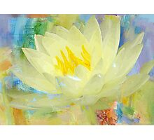 LOVELY LOTUS Photographic Print