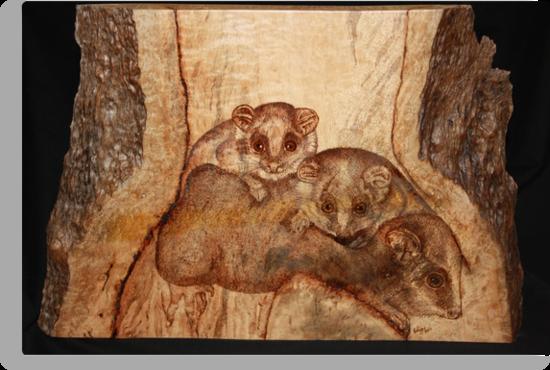 Possum Mum and Two Bubs by aussiebushstick