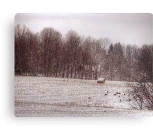 turkeys winter field  Metal Print