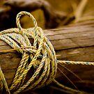 Beach rope by photodivaanna