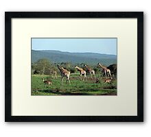 Early morning in God's Country Framed Print