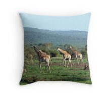 Early morning in God's Country Throw Pillow