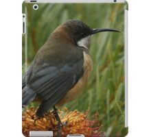 Nectar Feeder iPad Case/Skin
