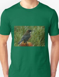 Nectar Feeder Unisex T-Shirt