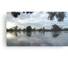 Flooded Plains  Metal Print