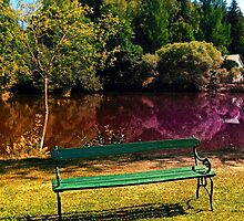 Bench at the pond by Patrick Jobst
