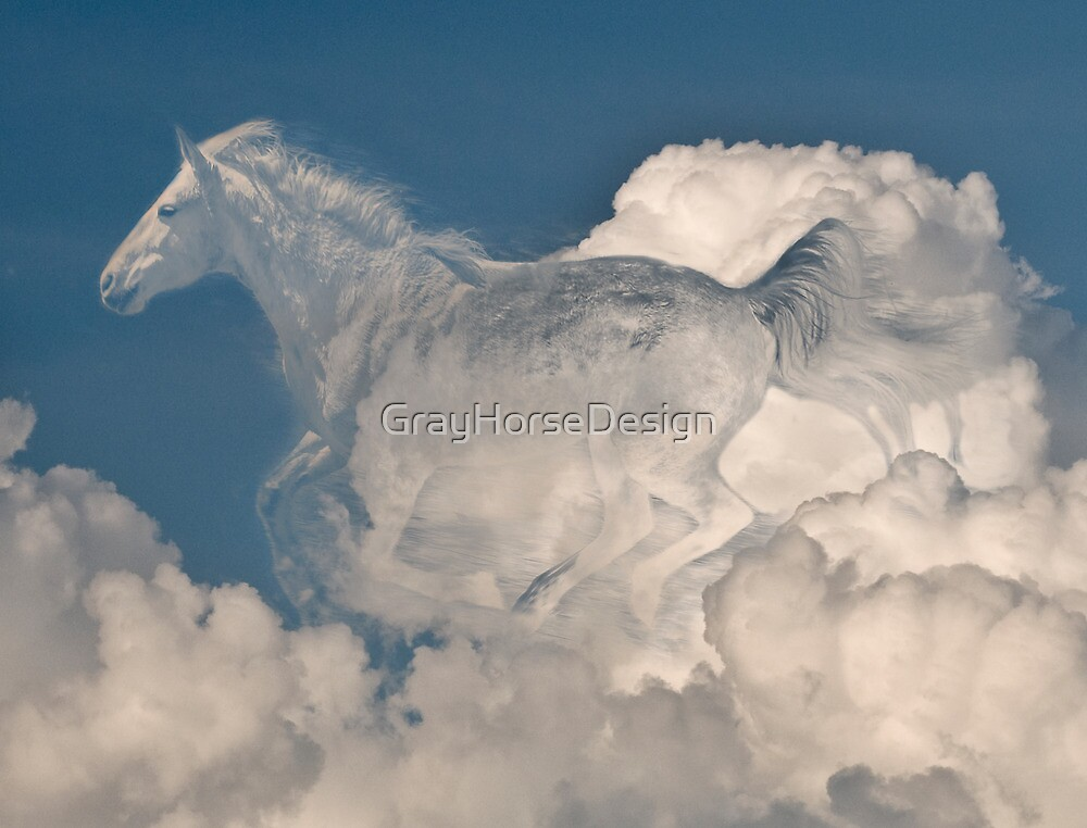 Lost in the Clouds by GrayHorseDesign