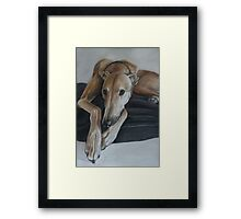 Bauregard Greyhound Framed Print