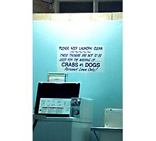 CRABS or DOGS Photographic Print