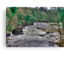 Aysgarth Falls  - Yorkshire Dales Canvas Print