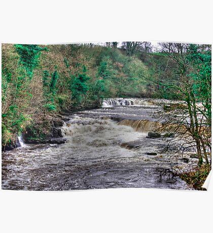 Aysgarth Falls  - Yorkshire Dales Poster