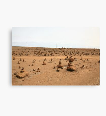 Still(ness) Canvas Print