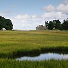 Nauset Marsh - Eastham, MA by Stephen Cross Photography