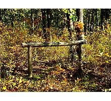 The Old Hitching Post Photographic Print