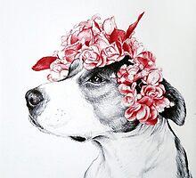 Dog crown by DrSoed