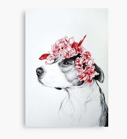 Dog crown Canvas Print