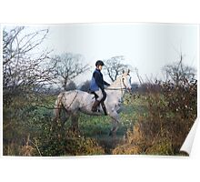 The white horse Poster