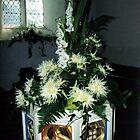 Font Flowers - Denver, Norfolk by Stephen Willmer