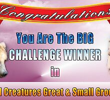 Banner - Challenge Winner All Creatures G&S by Photography by TJ Baccari
