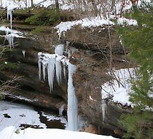 Frozen Waterfall by Laurel Talabere