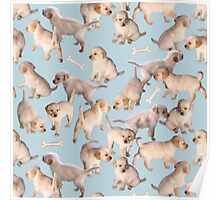 Too Many Puppies Poster