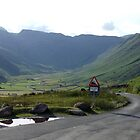 Sunny Day in Langdale Fell by Paul  Green