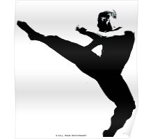 Tae Kwon Do Poster