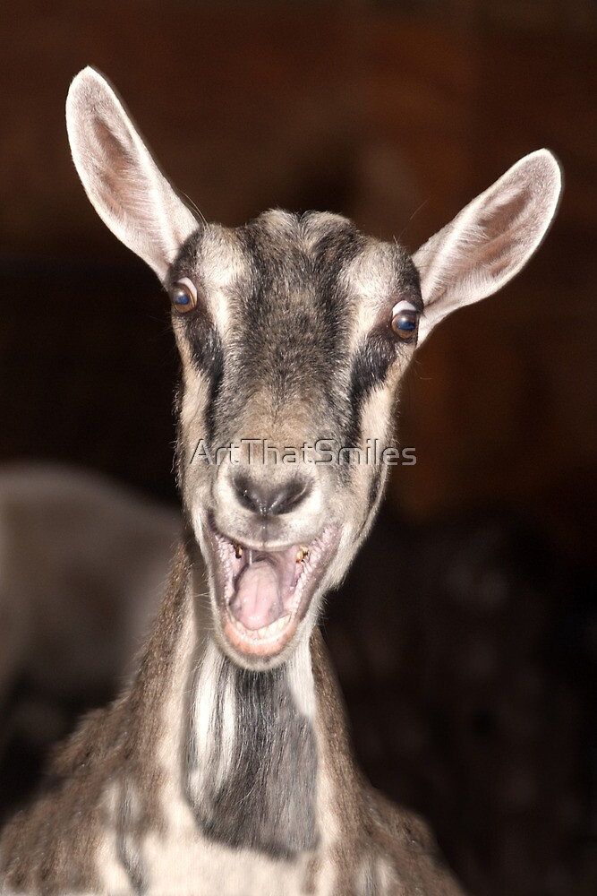 """I'm Baaaad"" - goat has goofy expression by ArtThatSmiles"