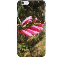 Purple Flower on a Path iPhone Case/Skin