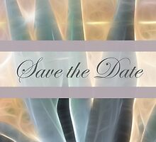 Blue Agave 1 Glow Save the Date Wedding by Christopher Johnson