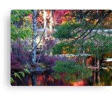 Fall Landscape Oak Grove Road Canvas Print