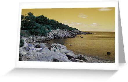 Gold Coastal Maine by Christy  Bruna