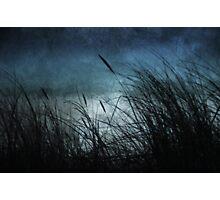 Night Dunes Photographic Print