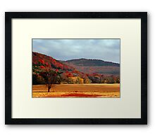 Nature Paintings Framed Print