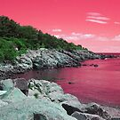 Pink Coastal Maine by Christy  Bruna