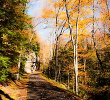 Taking a Stroll by Jeanne Sheridan