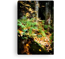 Amber Thicket Canvas Print