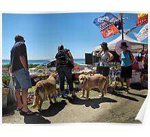 Saturday market in St Leonards VIC Poster