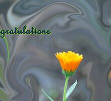 Congratulations Card -To Vigor And Jeanlphotos by Terrie Taylor