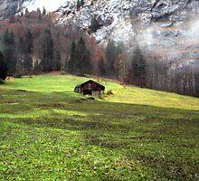 Suisse #5 by Mariya Manzhos