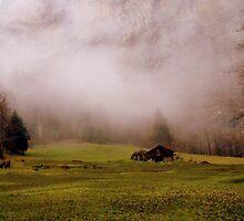 Suisse #7 by Mariya Manzhos