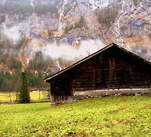 Suisse #8 by Mariya Manzhos